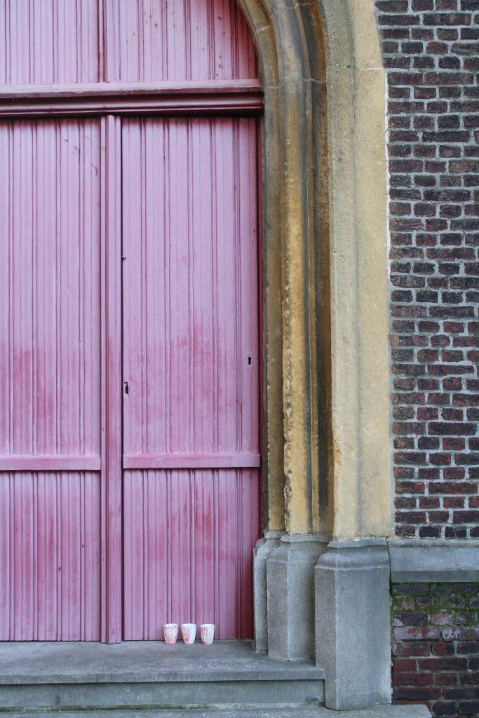 Meike Janssens - escapisme - rose rouge (2021)