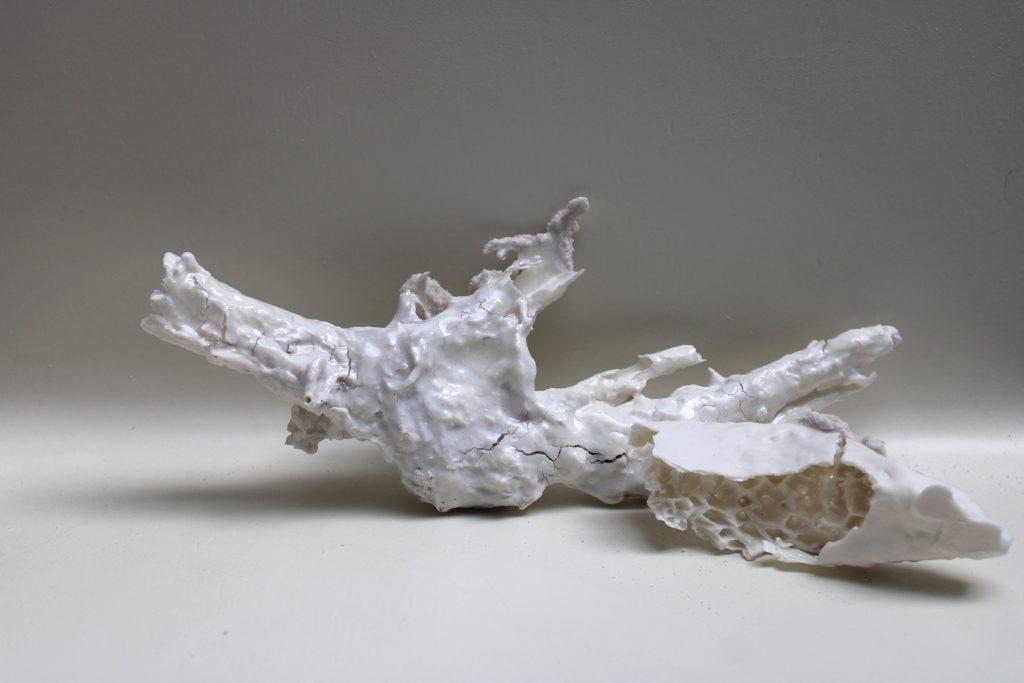 Meike Janssens - poëtisch porselein België