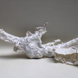 Kunstproject- InsideNature NatureInside